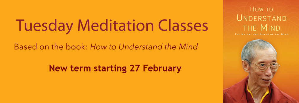 Meditation class, how to understand the mind