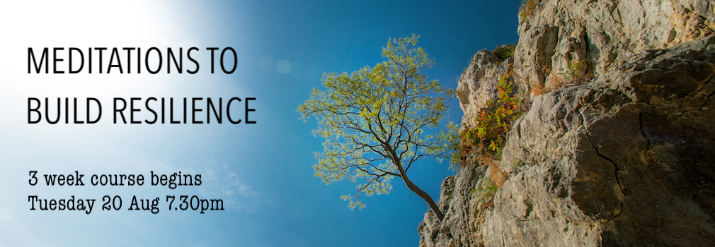 Meditations for Resilience